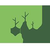 Partenaire Ecotree
