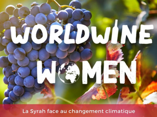 WORLDWINE WOMEN - LA VITICULTURE MODERNE FACE À LA QUESTION ÉCOLOGIQUE