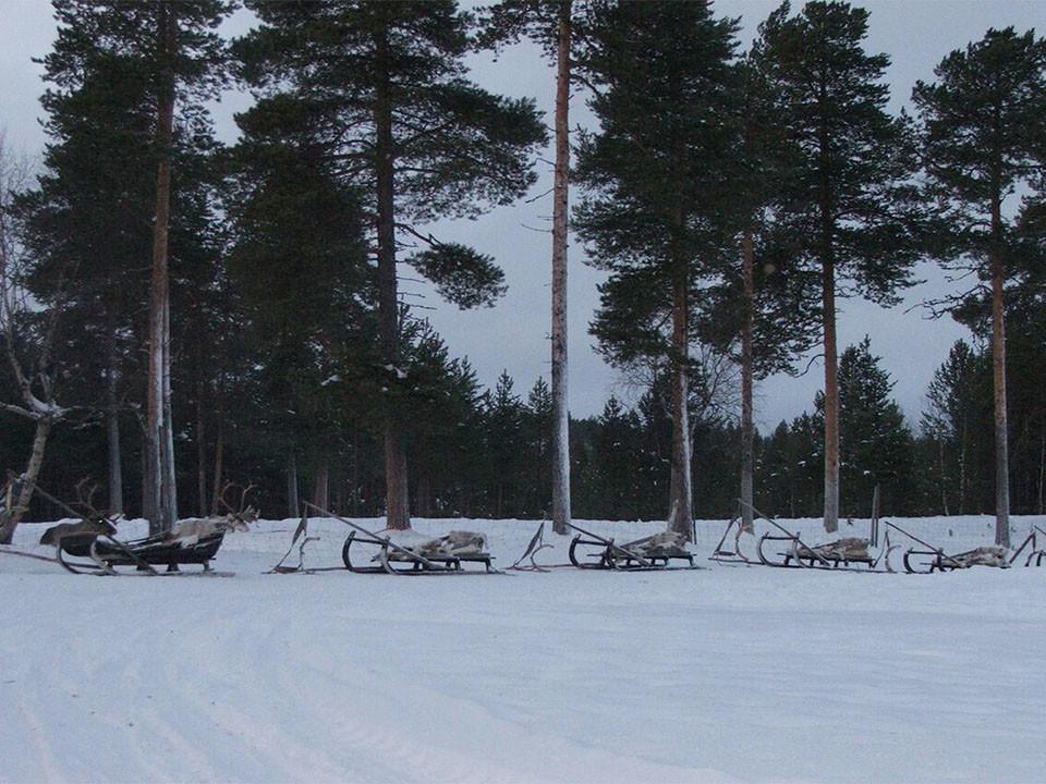 ZERO MOVEMENTS: GO TO FINLAND!